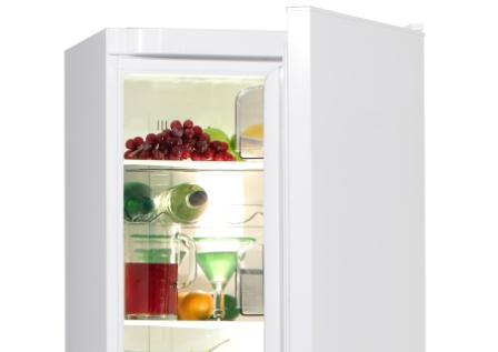 fridge-450x320